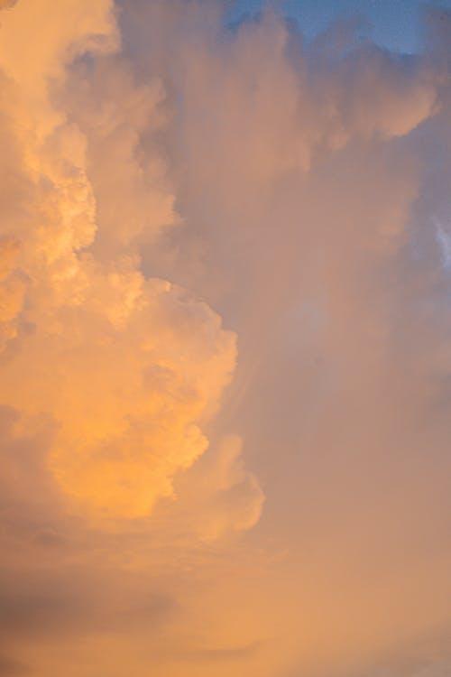 Безкоштовне стокове фото на тему «вечір, високий, драматичний»