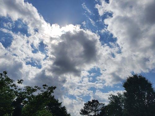 大きな空, 曇り空, 空, 雲の無料の写真素材