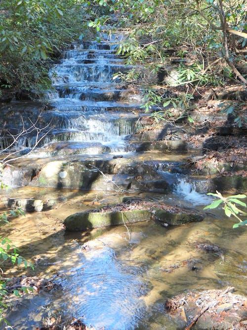 トリック, ランニングブルック, 流れる水, 滝の無料の写真素材