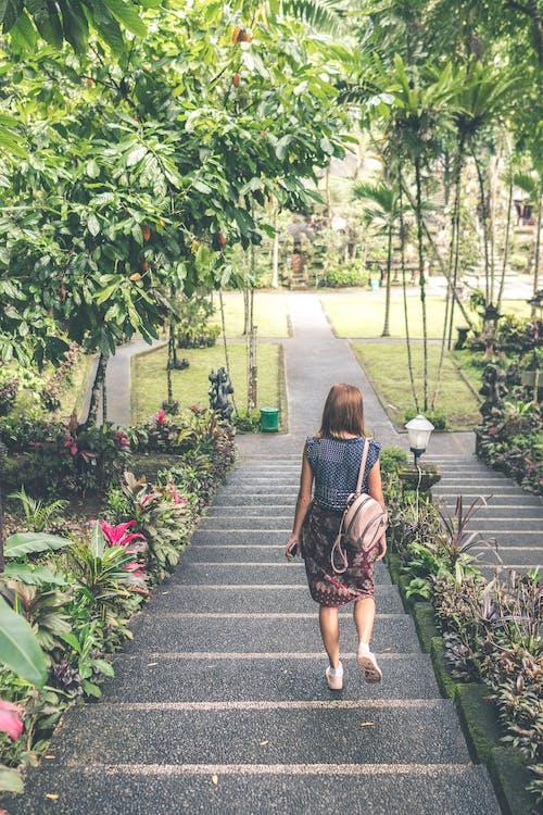 걷고 있는, 계단, 공원, 나무의 무료 스톡 사진