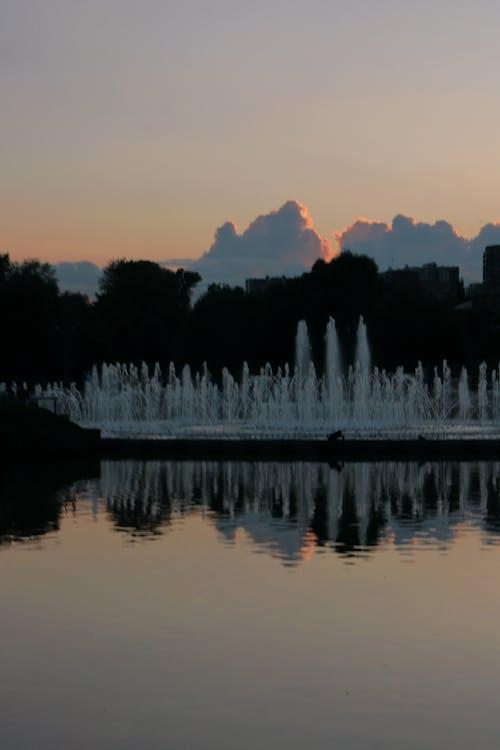 Immagine gratuita di acqua, alba, albero