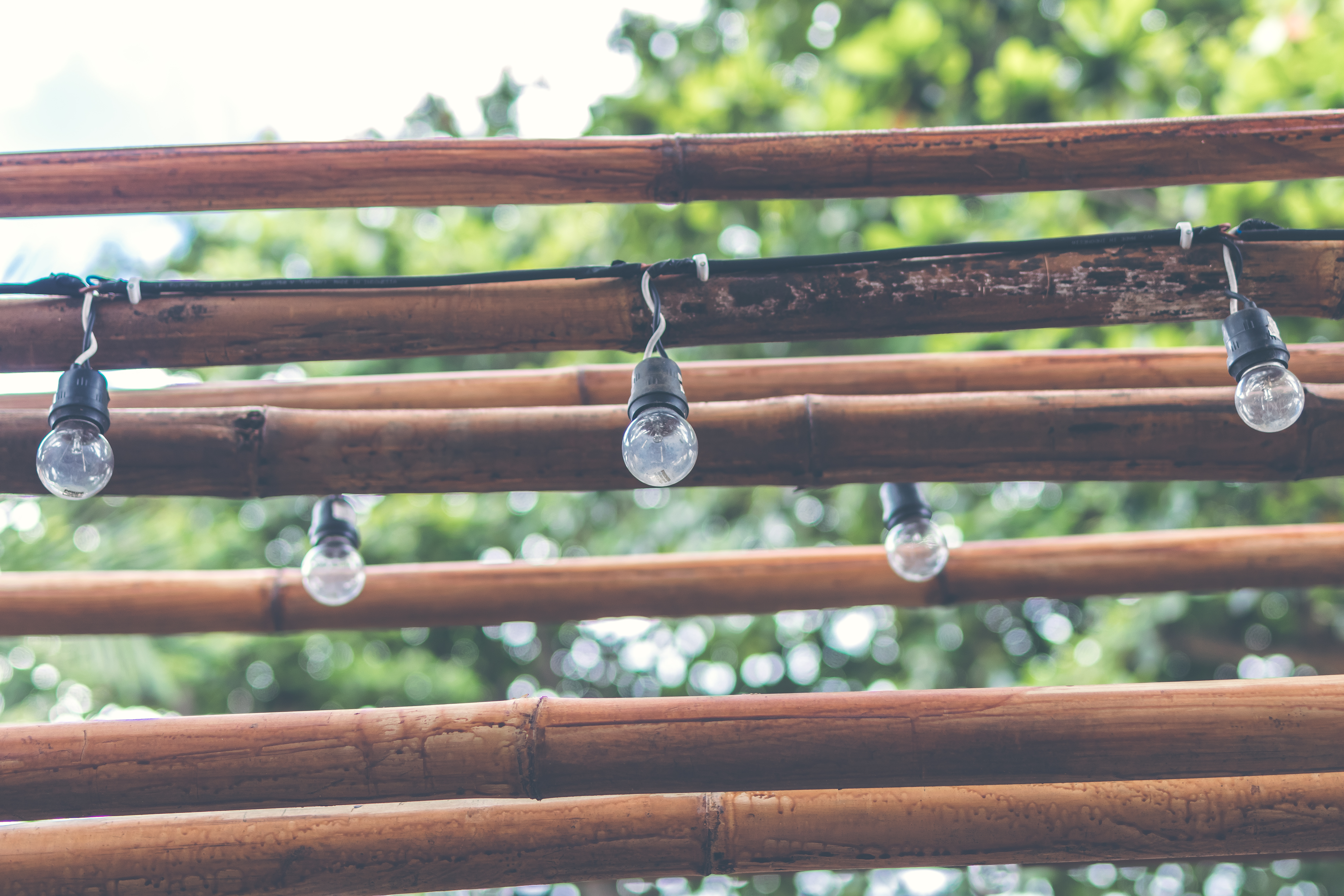 Shallow Focus Photography of Light Bulb Hanging on Brown Wooden Sticks