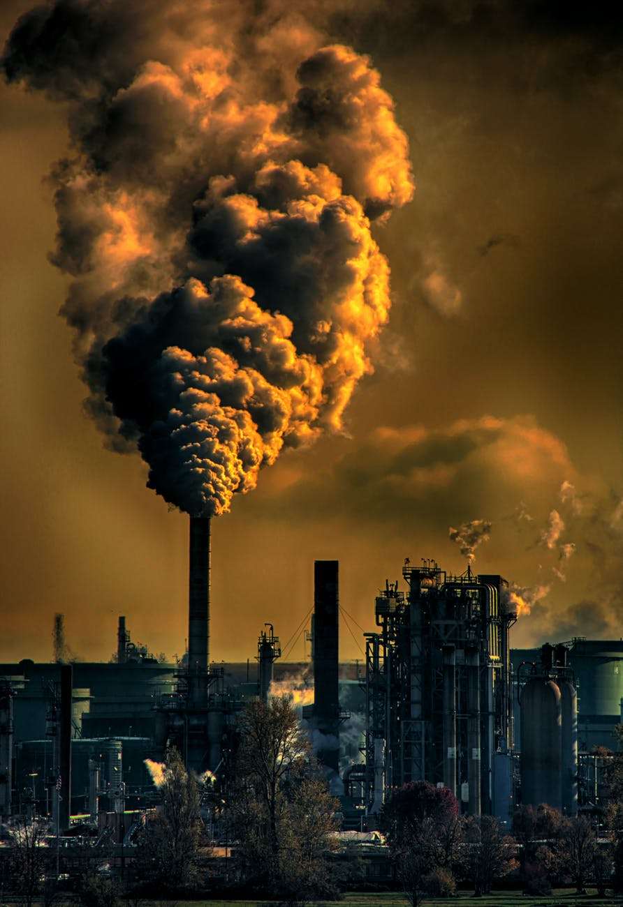 Коронавірус рятує Землю?