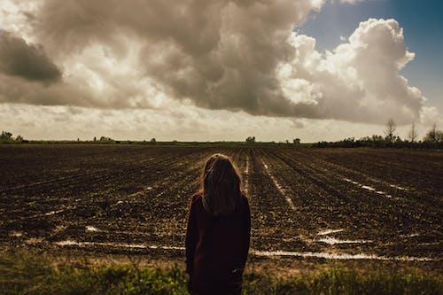 Kostnadsfri bild av bondgård, dagtid, fält, flicka