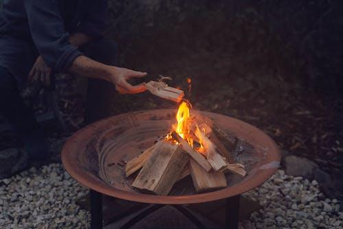 Fotos de stock gratuitas de adulto, al aire libre, ardiente