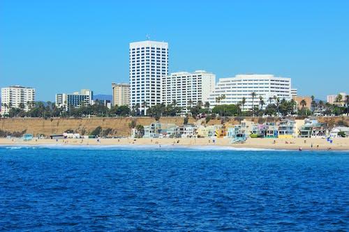 Free stock photo of beach, city