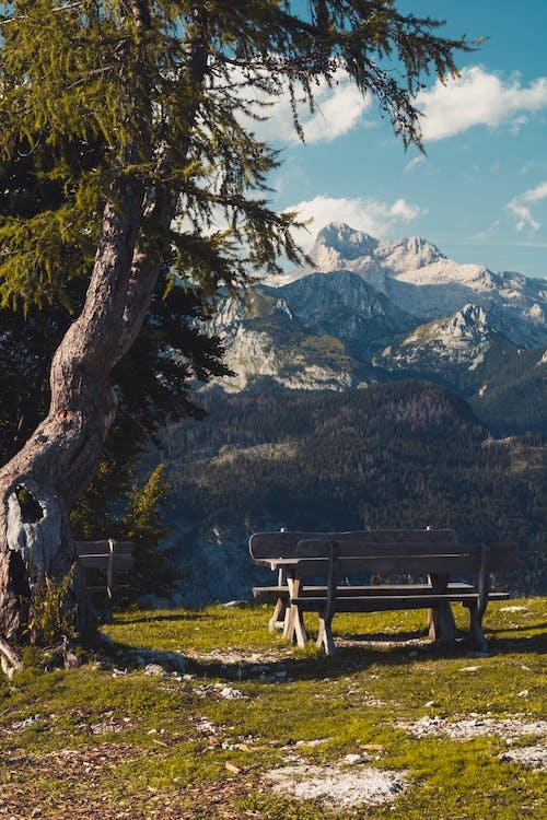 Gratis stockfoto met banken, bankjes, berg uitzicht