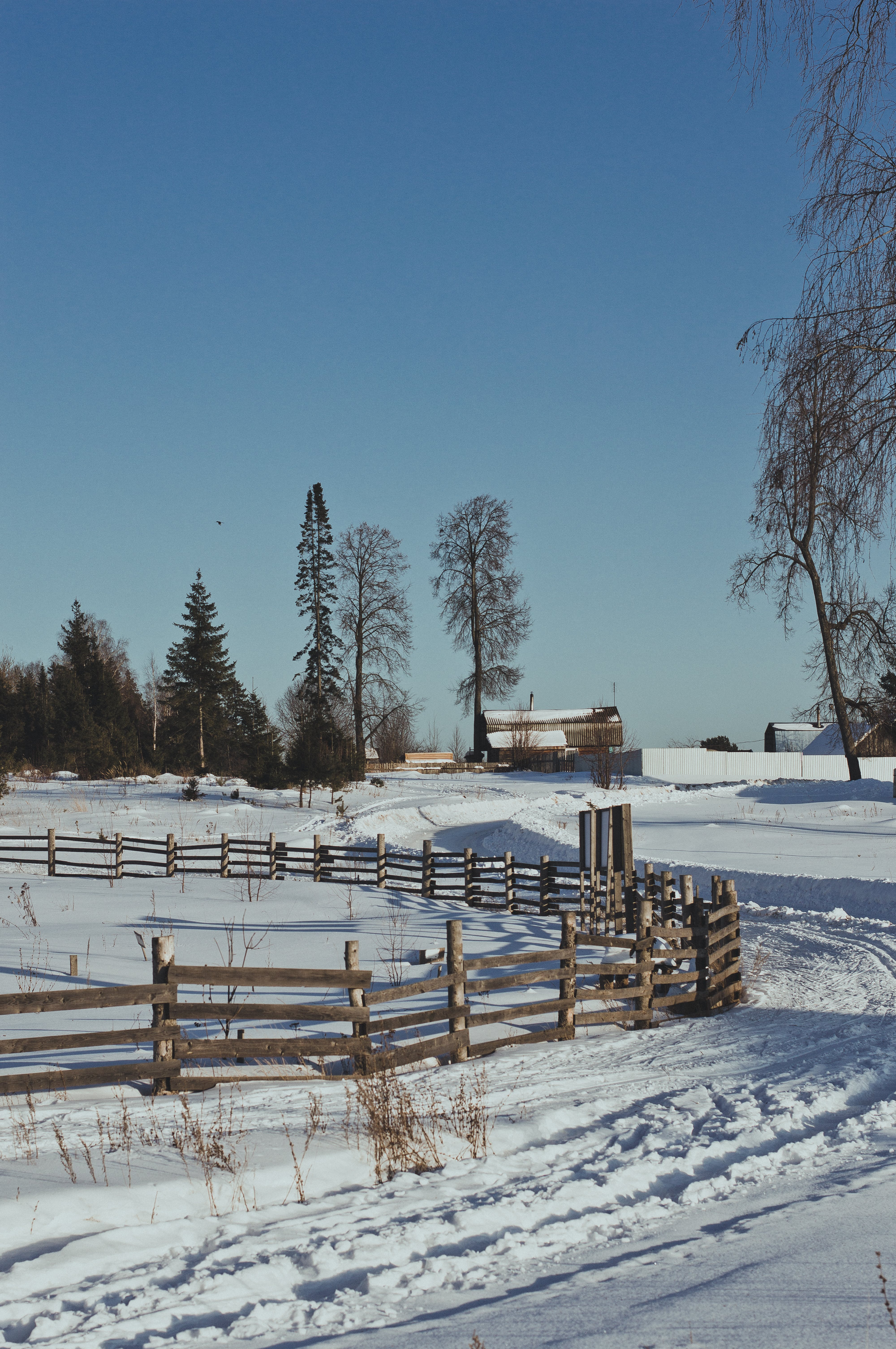 Brown Wooden Fence during Winter