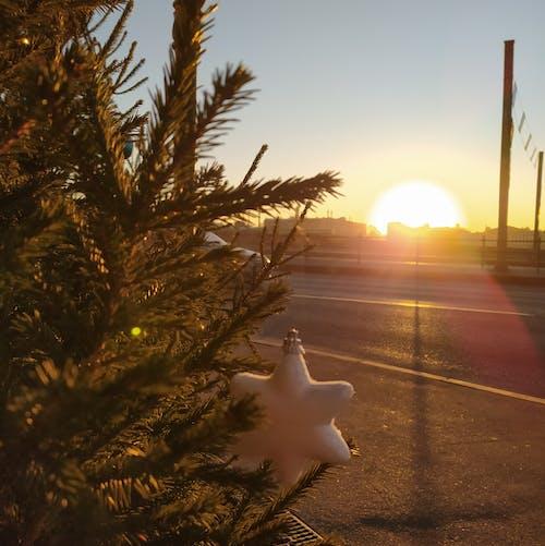 Immagine gratuita di alba, bagno di sole, chiarore del sole