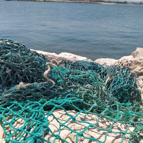 Immagine gratuita di a rete, costa della scogliera, pesca