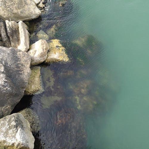Immagine gratuita di costa della scogliera, scogliera, scogliera costiera