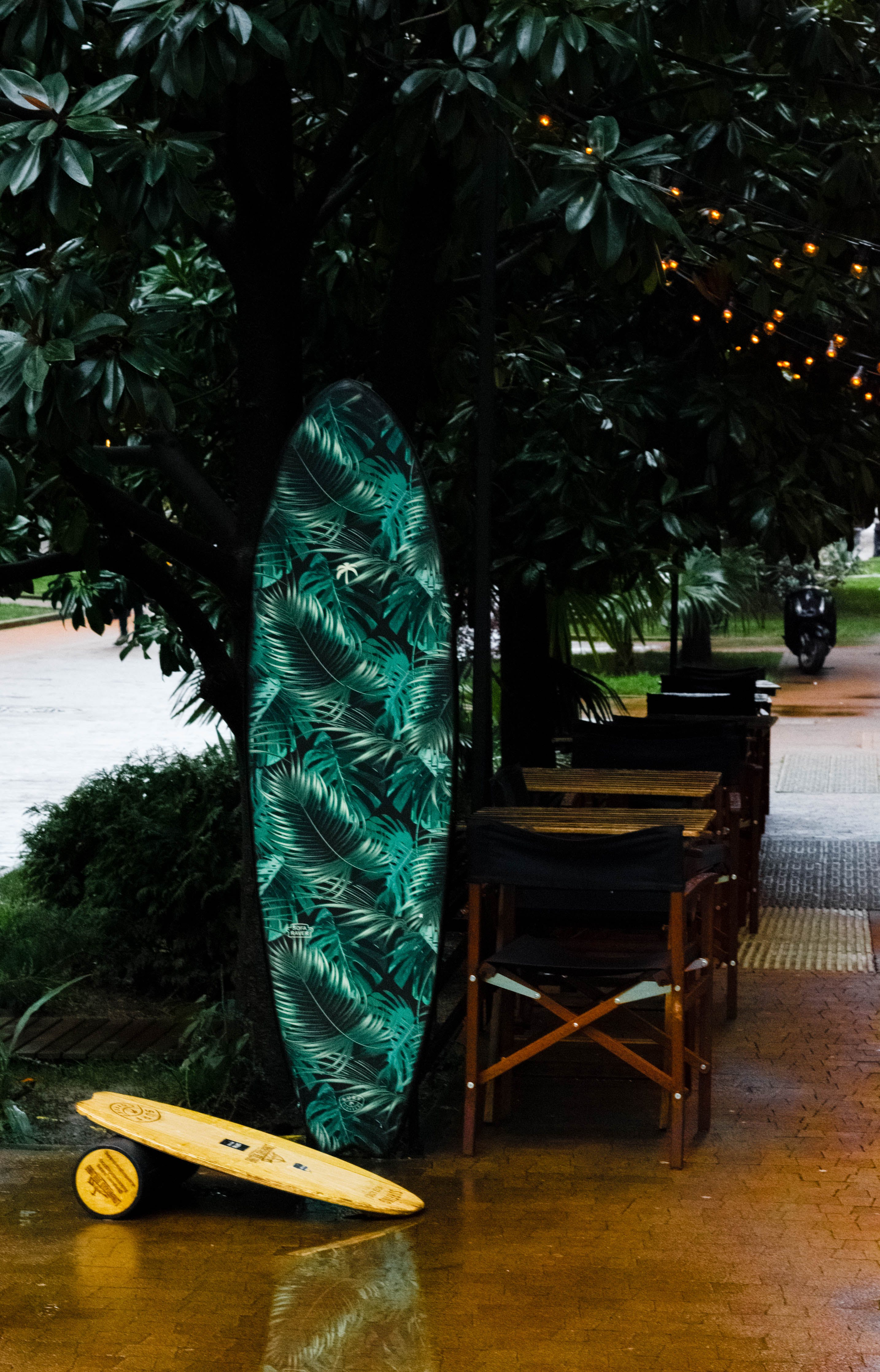 Green, White, and Black Leaf Print Surfboard Near Tree