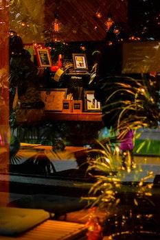 Free stock photo of restaurant, landscape, lights, bar