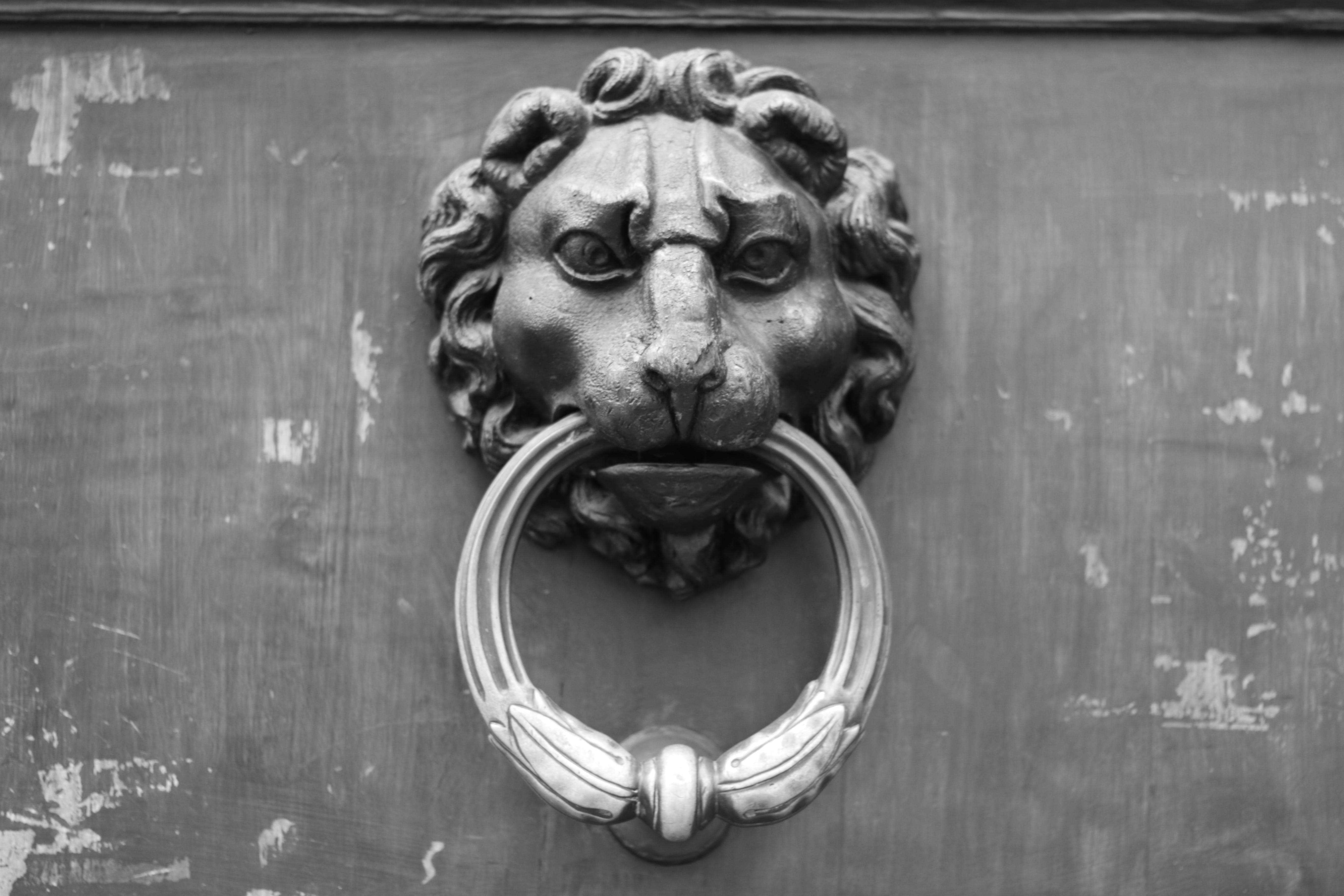Free stock photo of black and white, door clapper, florence, iron