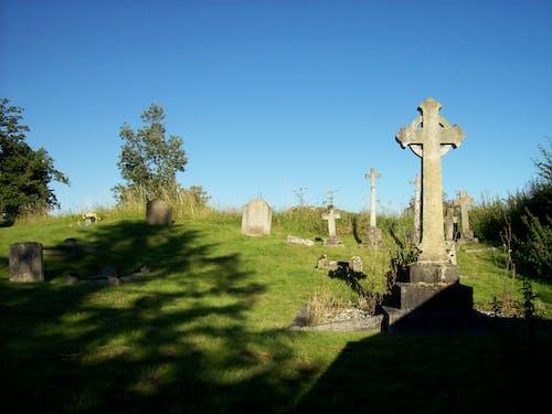 Free stock photo of graveyard