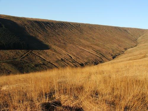 Imagine de stoc gratuită din cer, deal, iarbă, în aer liber