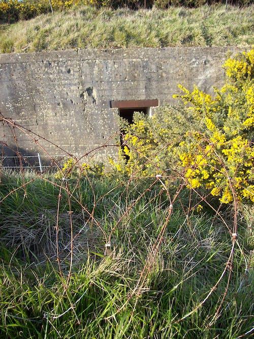 大西洋牆, 諾曼底, 點對點 的 免費圖庫相片