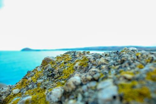 Δωρεάν στοκ φωτογραφιών με rock, ακτή, άμμος, βράχια σκεπασμένα με βρύα