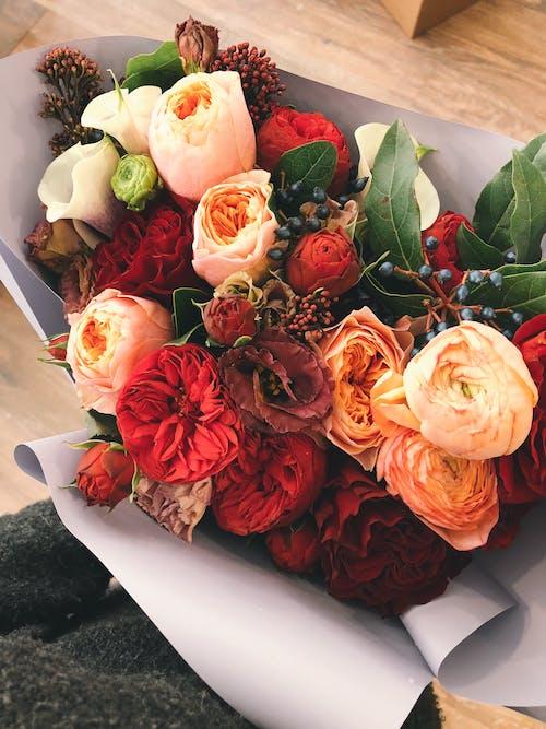 Darmowe zdjęcie z galerii z bukiet, delikatny, flora, kompozycja kwiatowa