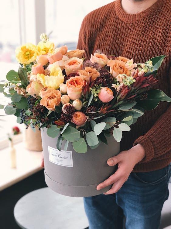 bó hoa, cái bình hoa, cây cảnh