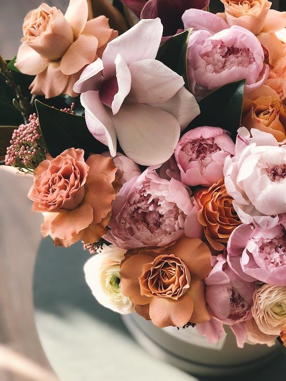 꽃, 꽃병, 꽃잎