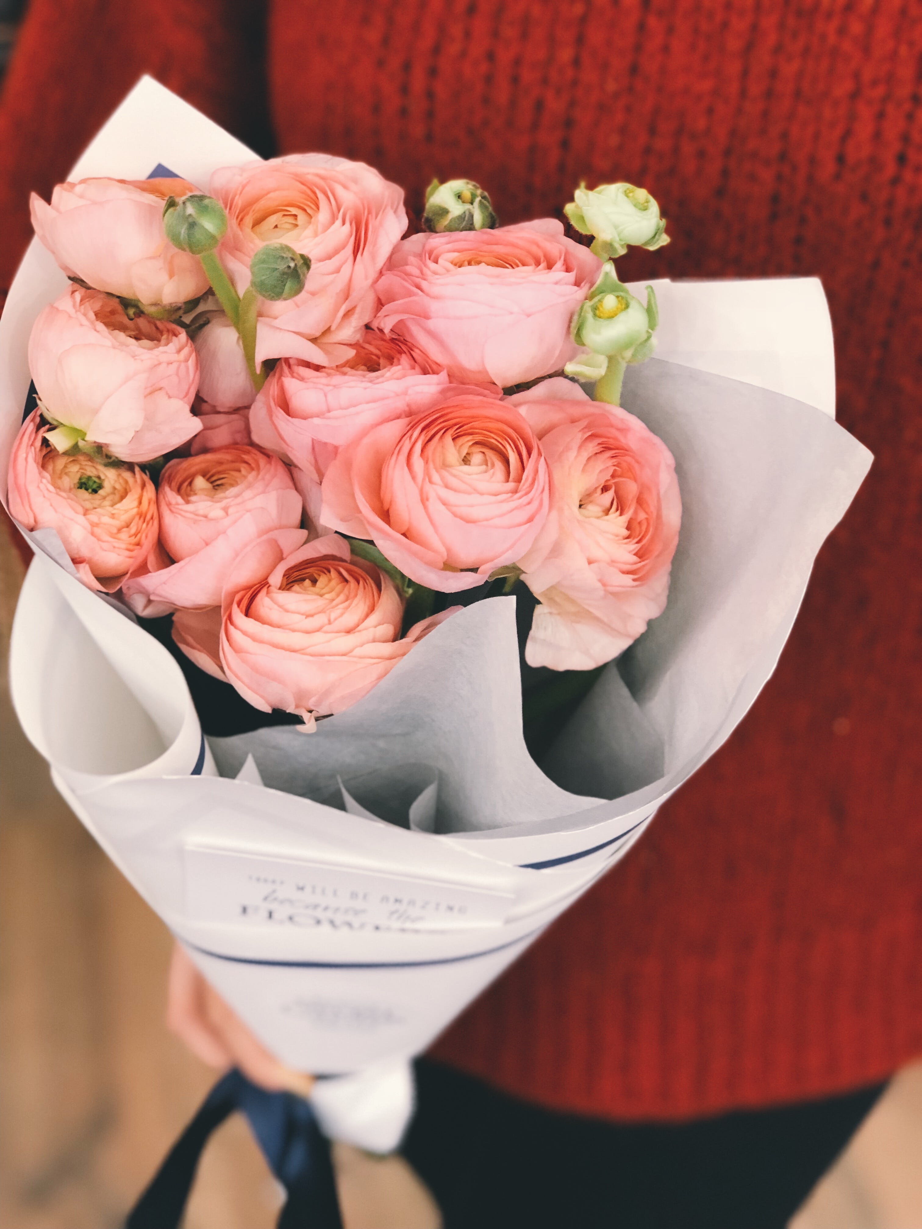 Person Wearing Red Sweater and Black Pants Holding Bouquet of Pink Flowers