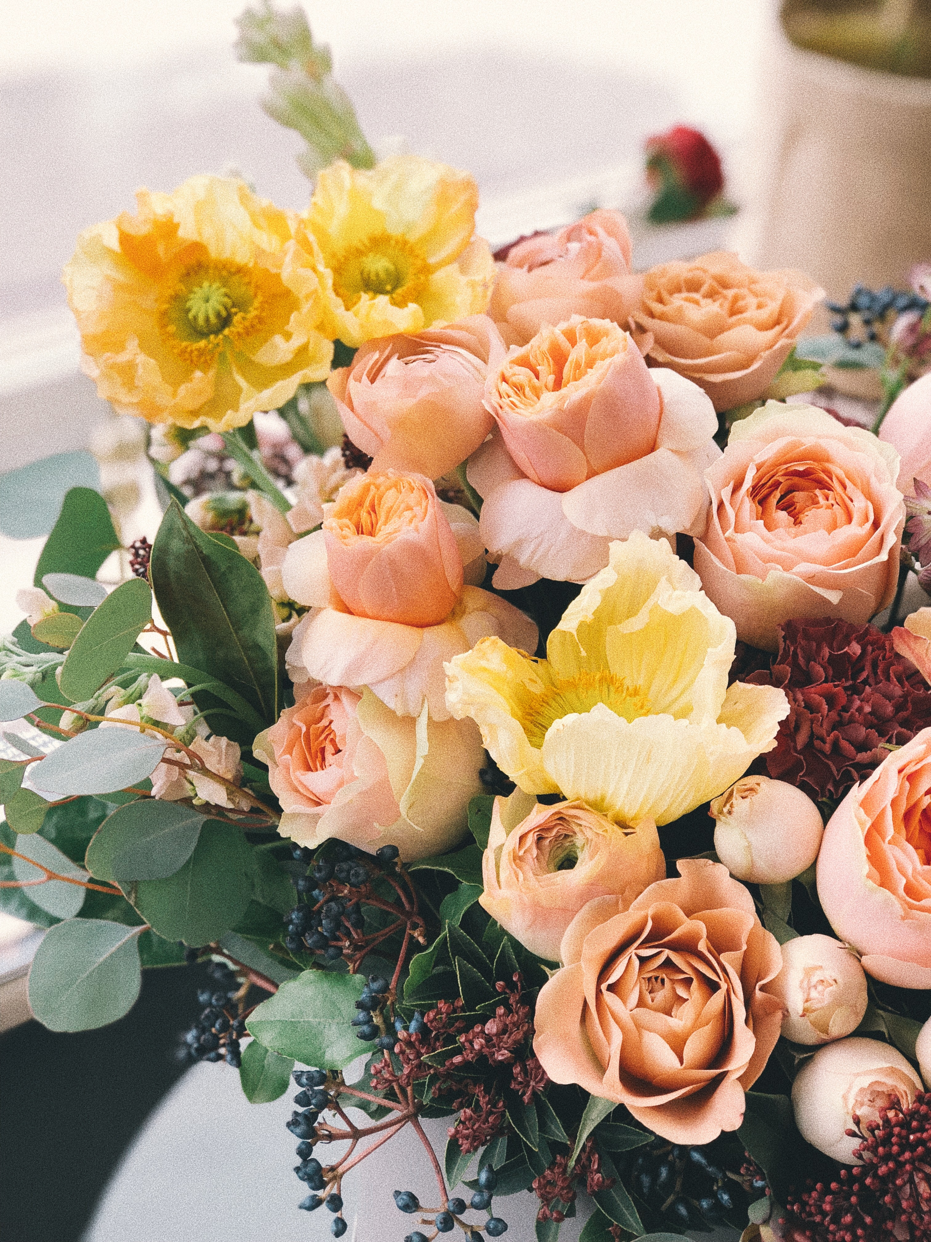 Pink And Yellow Flowers Free Stock Photo
