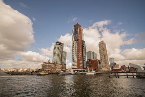 poort van rotterdam, wolkenkrabber鹿特丹, 城市, 天空 的 免費圖庫相片