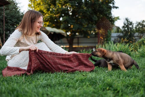 Girl in White Sweater Holding Brown and Black Short Coated Dog on Green Grass Field during