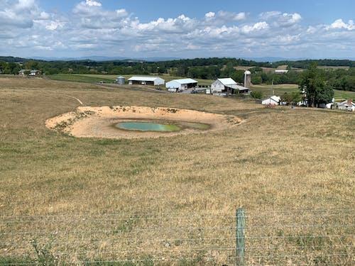 Free stock photo of farm pond, pond, pond drought