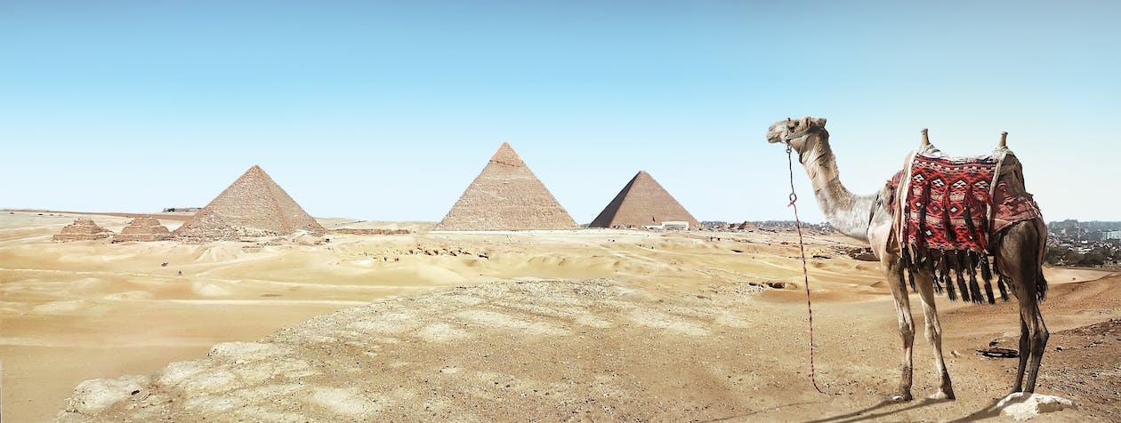 Kairo merupakan kota terbesar ke 6 di dunia
