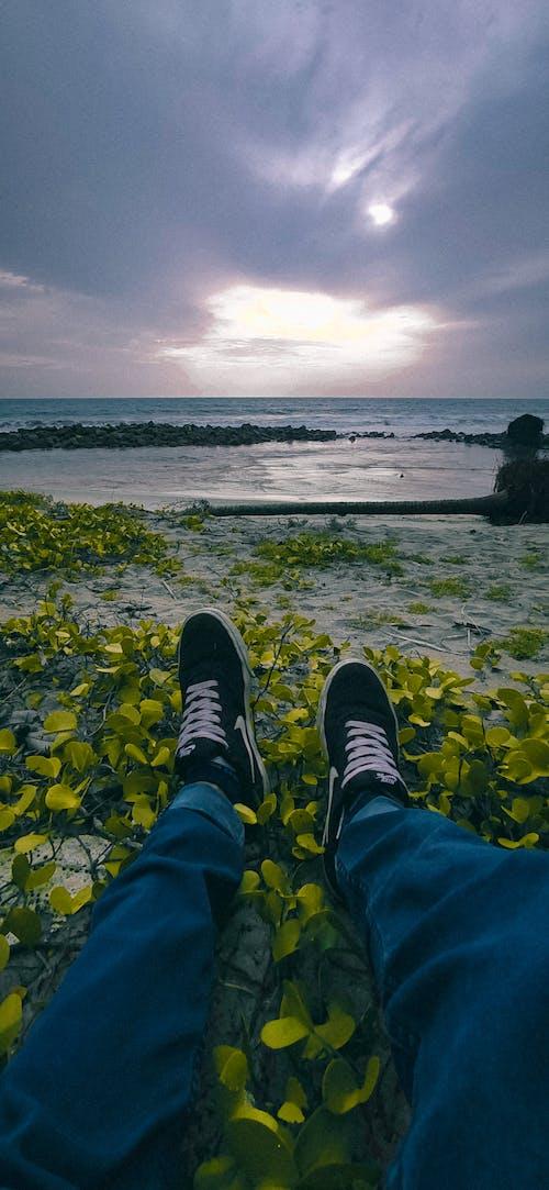 Kostenloses Stock Foto zu chillen, entspannen, fotografie