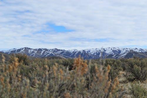 Darmowe zdjęcie z galerii z chmury, dzicz, góry, krajobraz