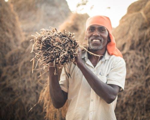 Free stock photo of face, farm, farmer