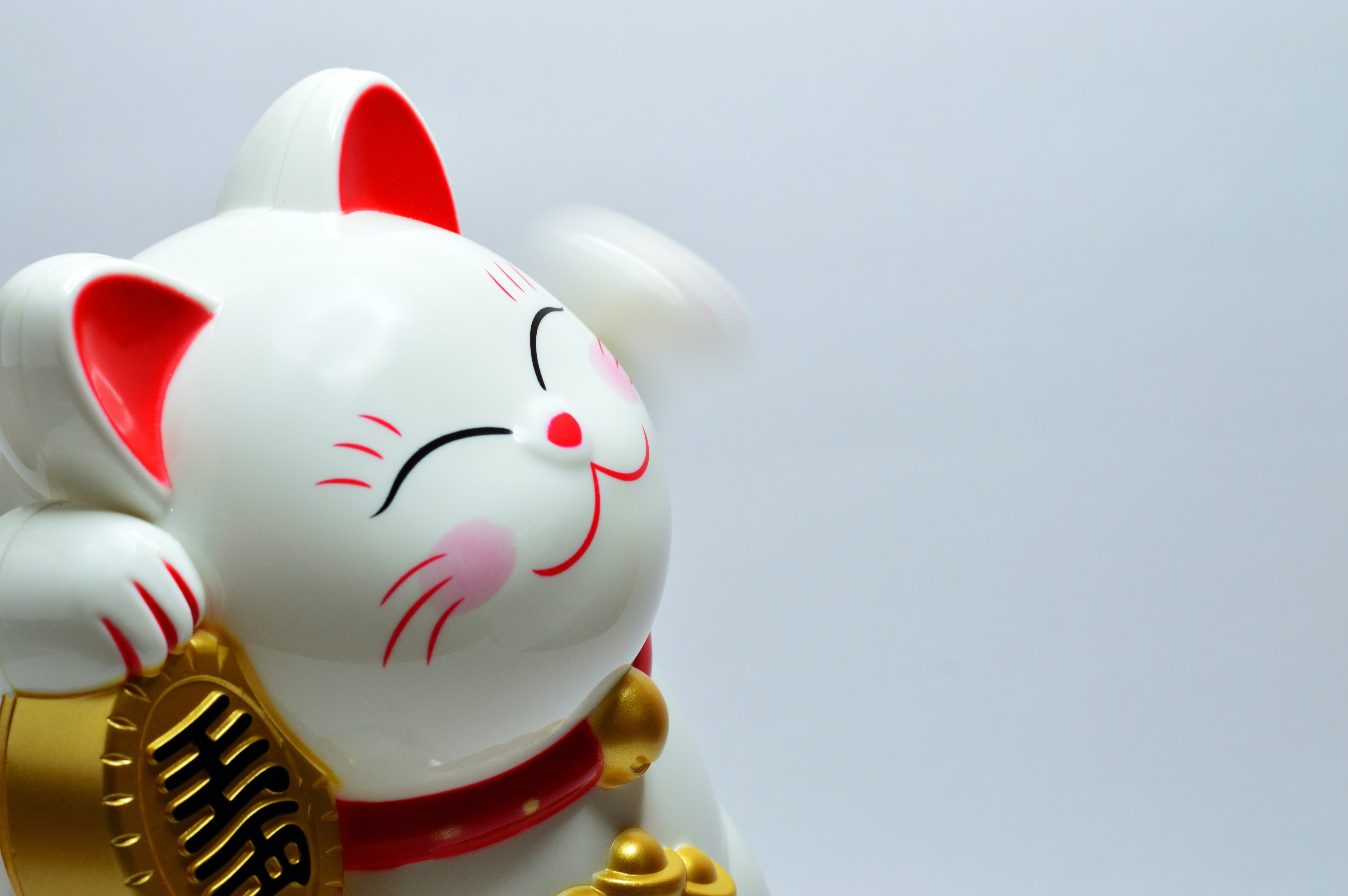 A Japanese lucky coin cat - a representative of Japanese culture.