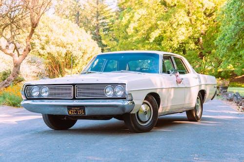Základová fotografie zdarma na téma asfalt, auto, auto fotografie