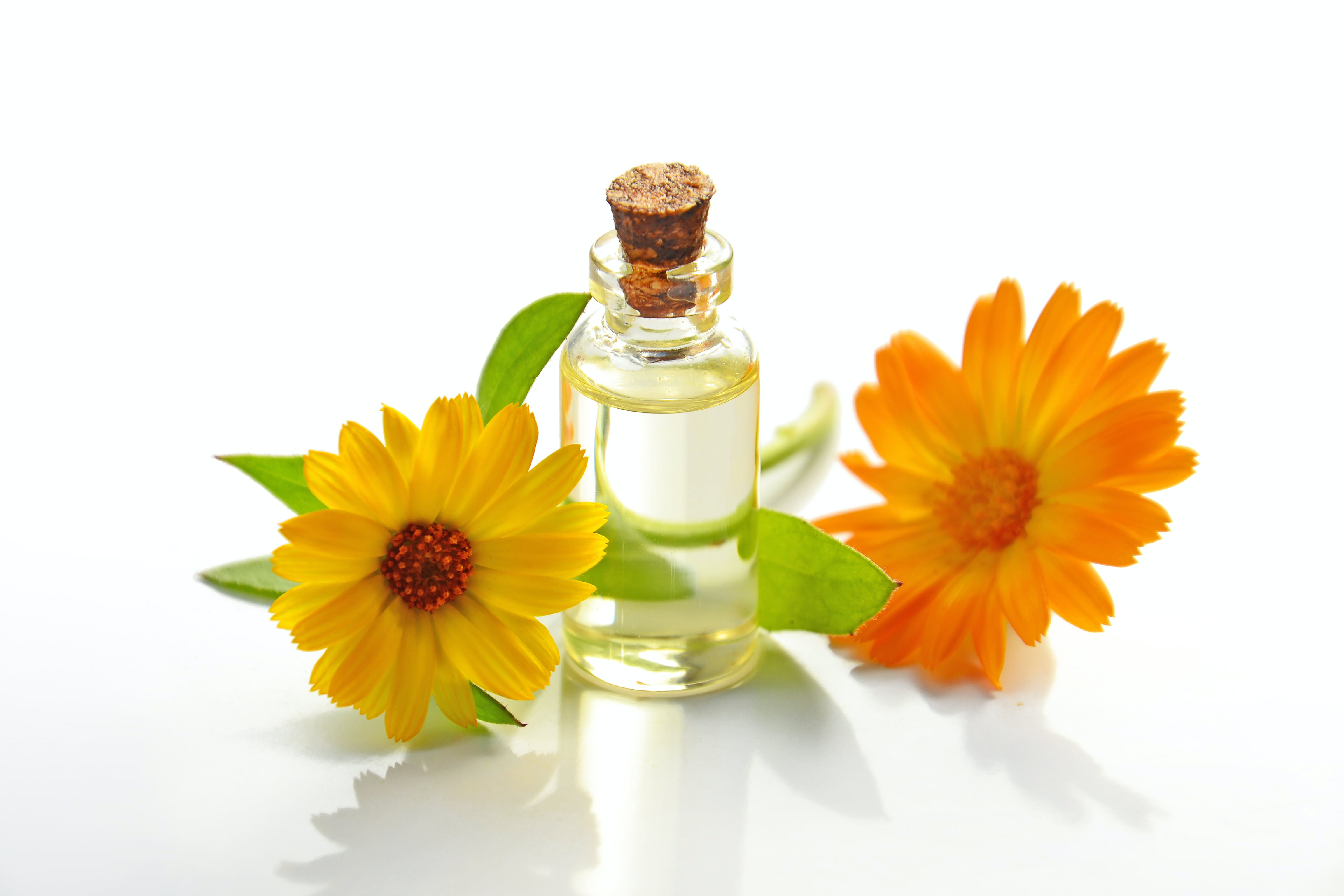 Two Yellow Sunflowers With Clear Glass Bottle With Cork Lid