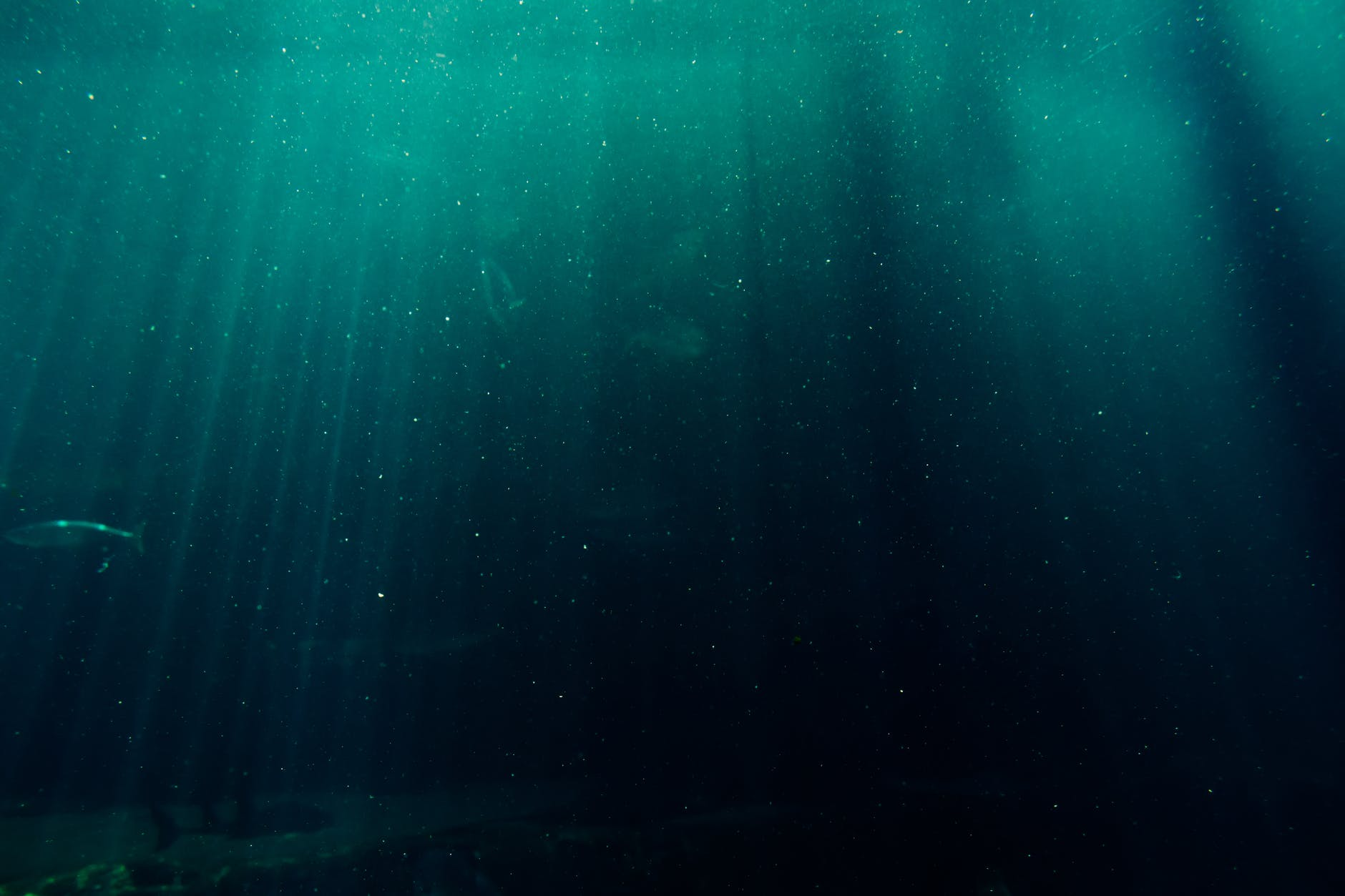 Чому на Шевченко немає води