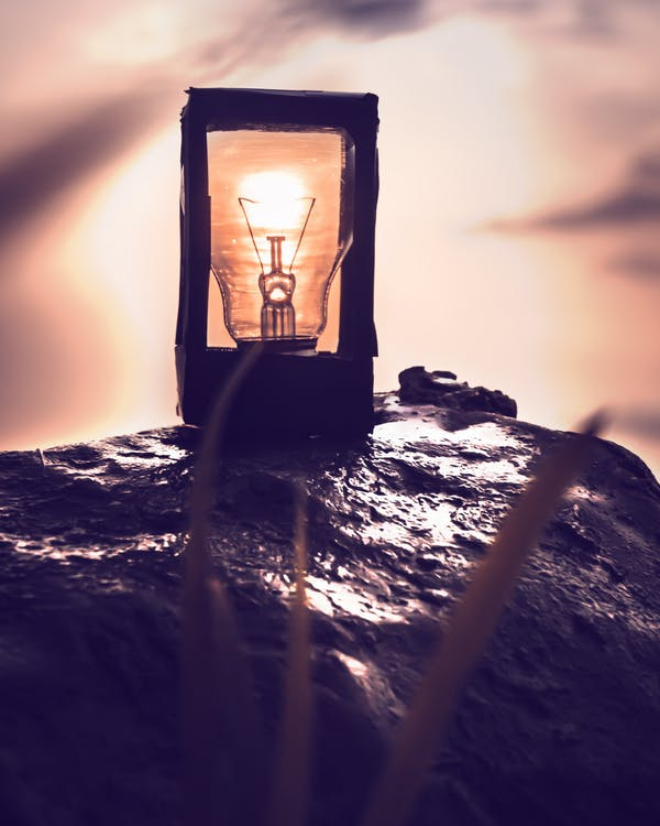 Orange Light Bulb on Rock