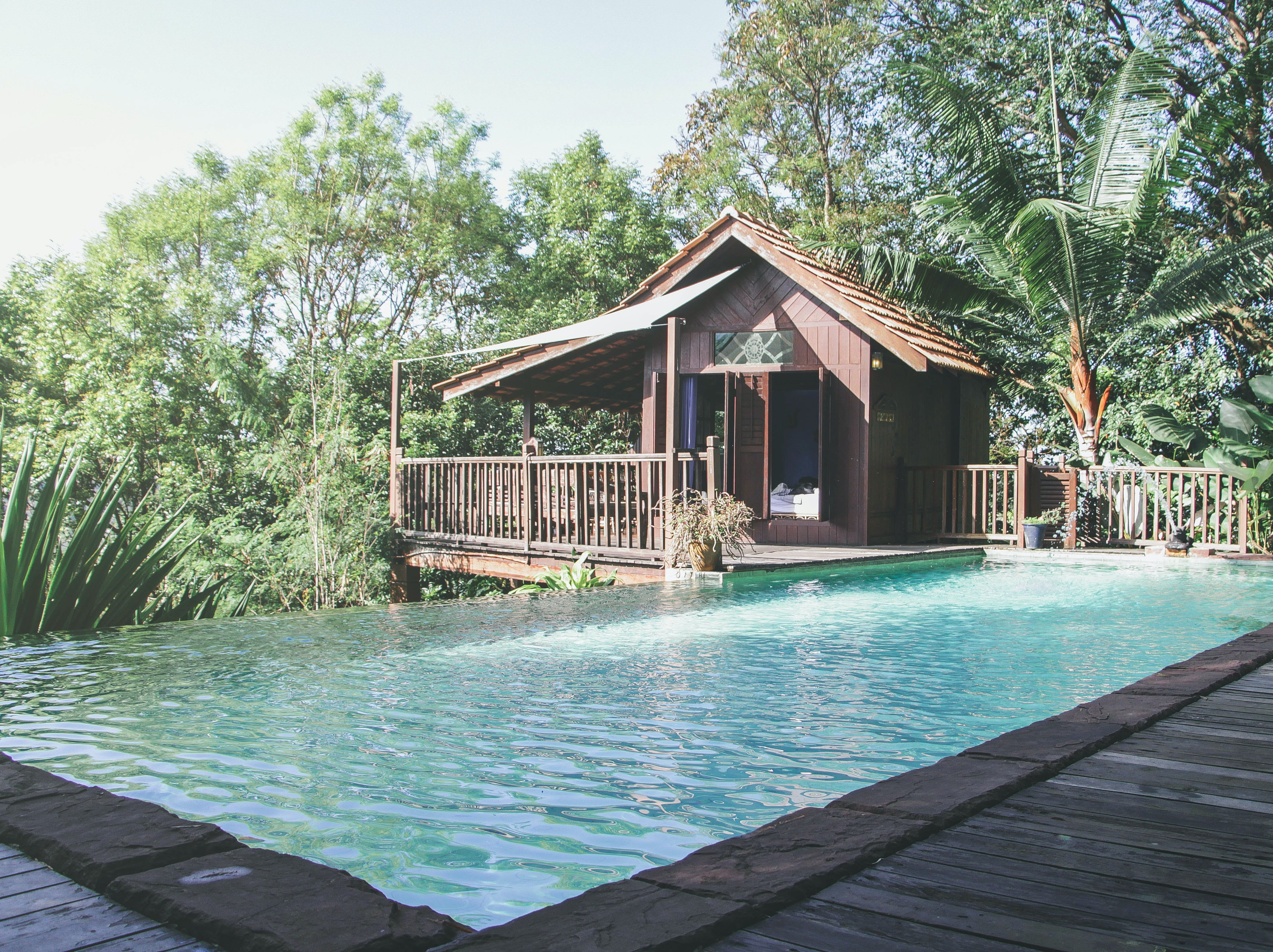 Free stock photo of jungle, nature, relaxation place, resort