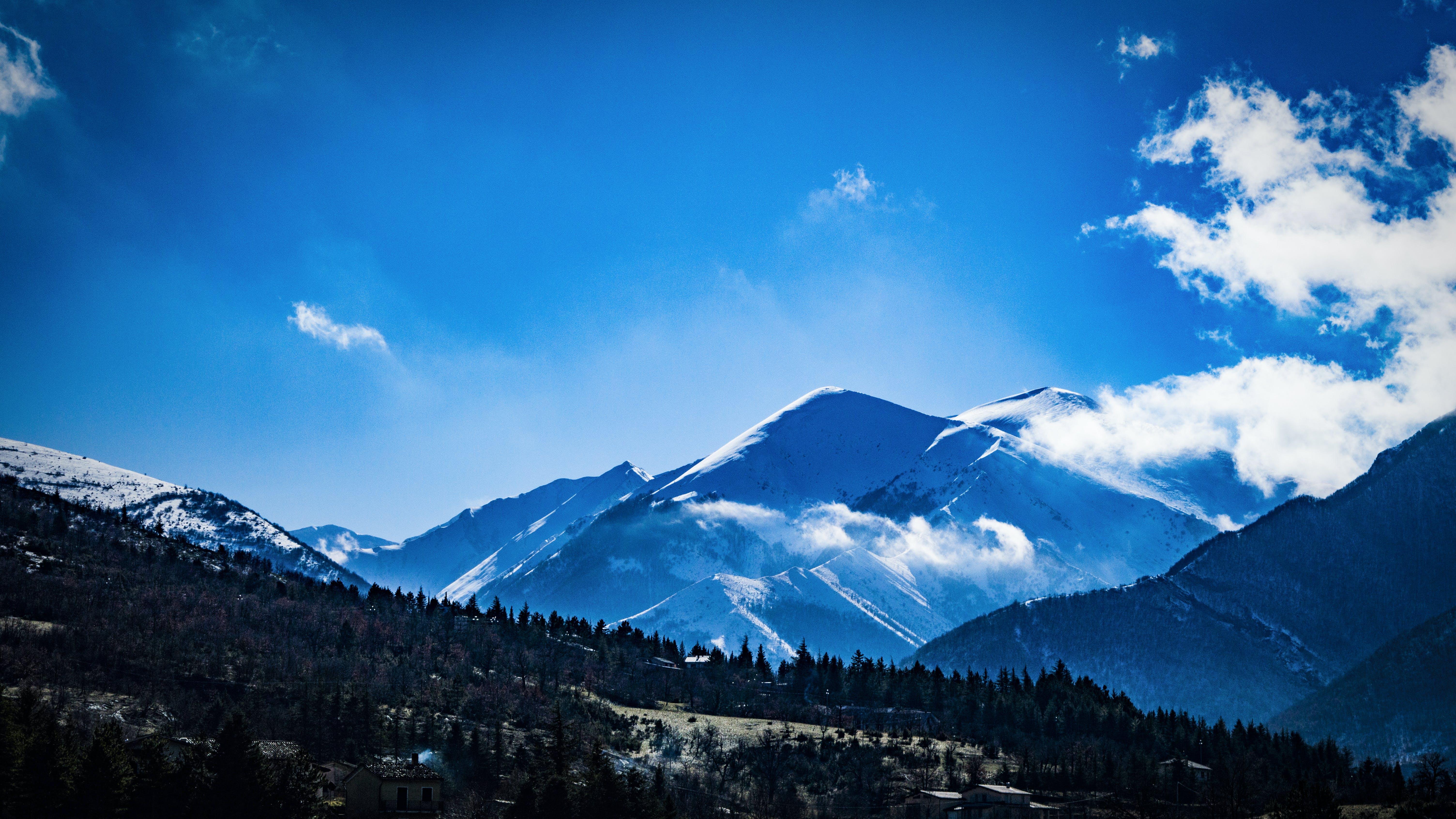 Photo of Trees on Mountains