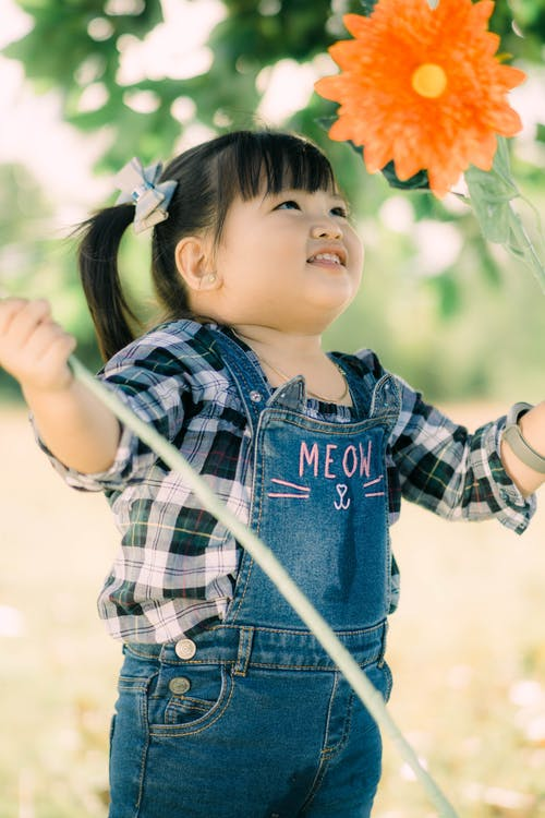 Boy in Blue and White Plaid Button Up Long Sleeve Shirt Holding Orange Maple Leaf