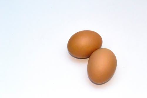 Free stock photo of chicken, egg tray, eggshell