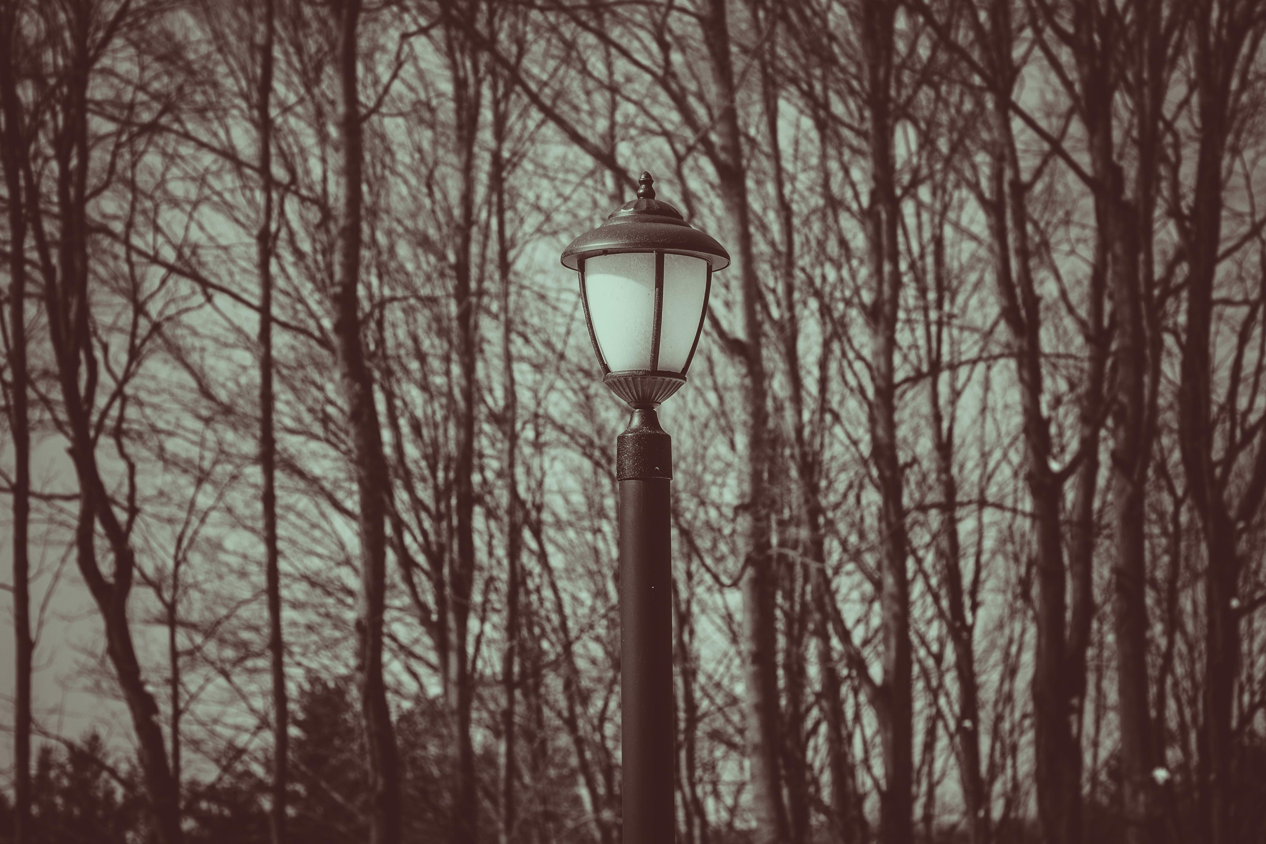 Immagine gratuita di minimalismo