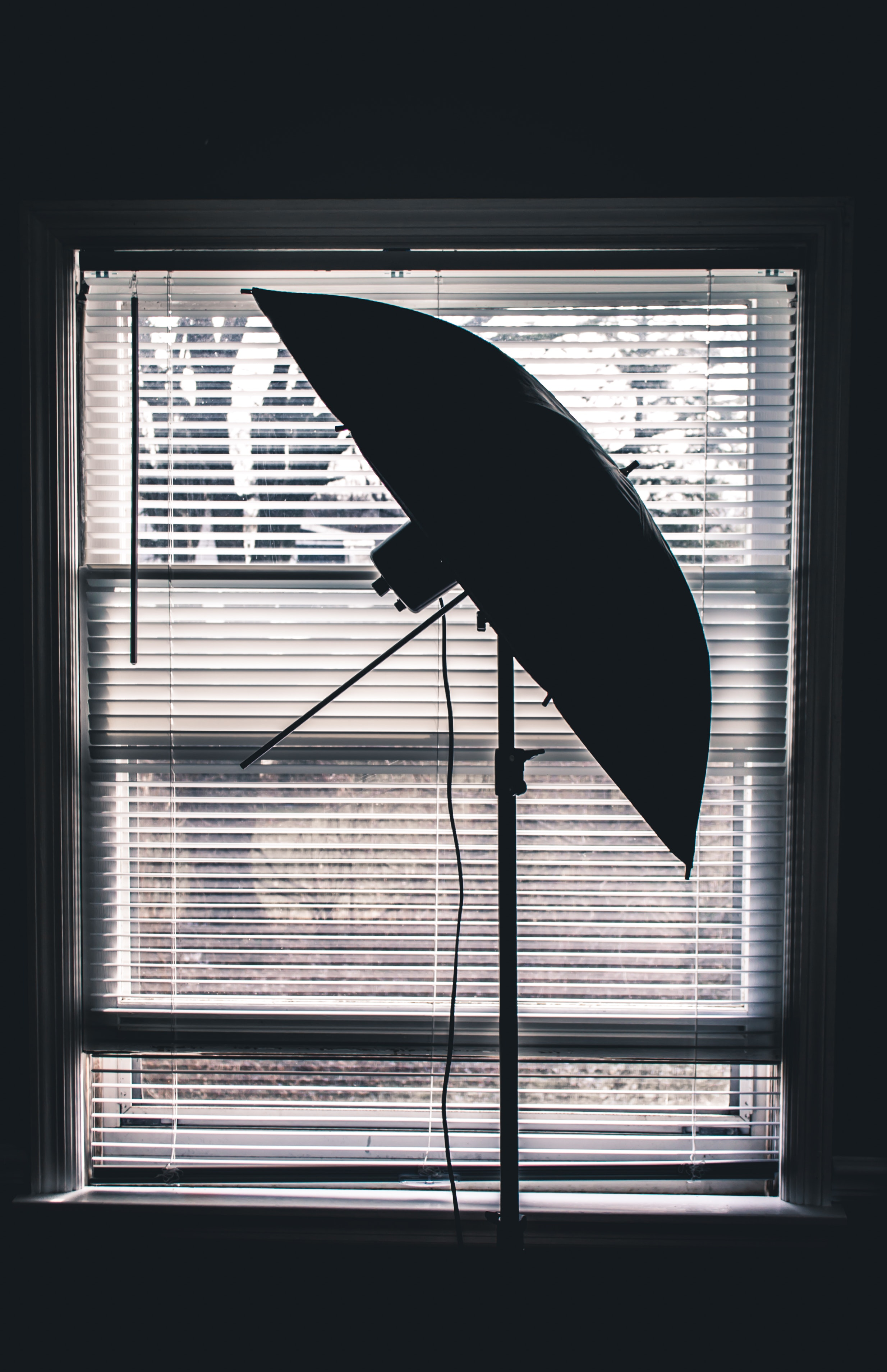 co c el window best solar hills control blinds coverings dorado silhouette shades