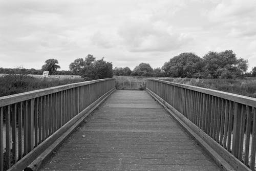 Grayscale Image of Bridge