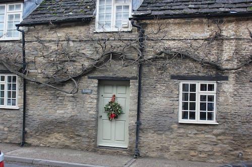 Free stock photo of door, trees, uk