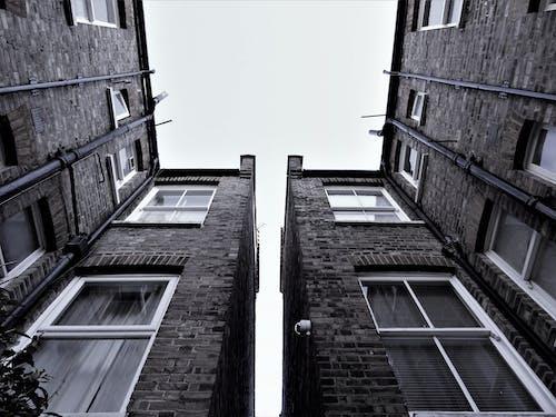 Kostenloses Stock Foto zu architektur, einfarbig, fenster, froschperspektive