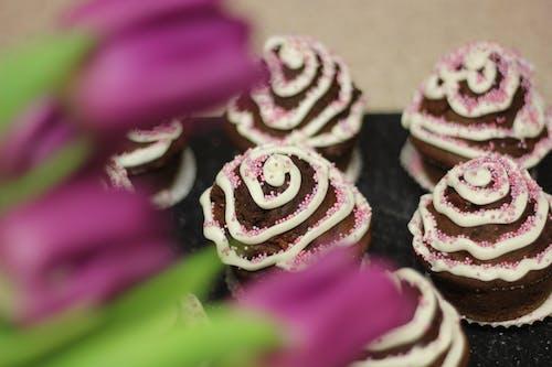 Free stock photo of birthday cake, clebration, cupcakes