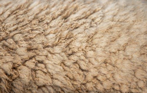 Beige Textile in Close Up Shot